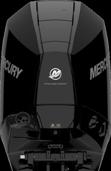 Mercury F 175 L DS