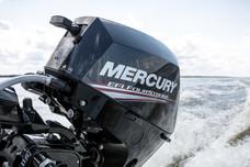 Mercury F 20 EH EFI